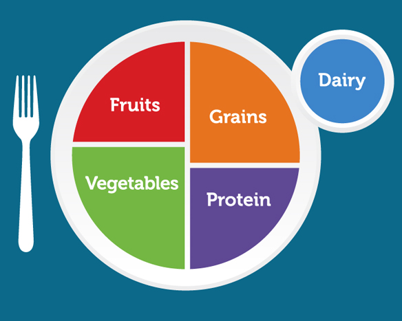 Using MyPlate in Food Processor